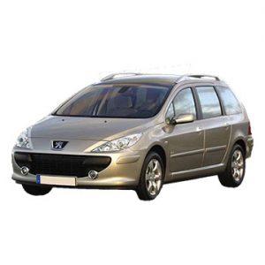 Peugeot 307 (08-2005 tot 09-2007)